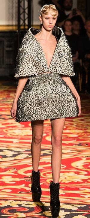 Iris van Herpen's 3D dress design.